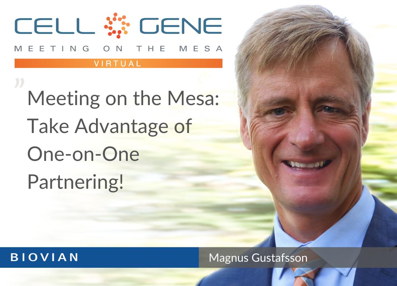 Meeting on the Mesa 2020 Magnus Gustafsson