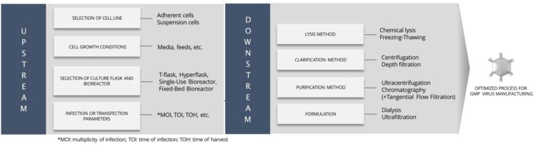 Viral Vector Process Development - Activity Diagram