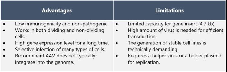 Advantages and Limitations of AAV vectors