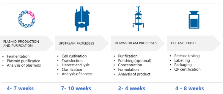 Timeline for GMP manufacture of AAVs - Example