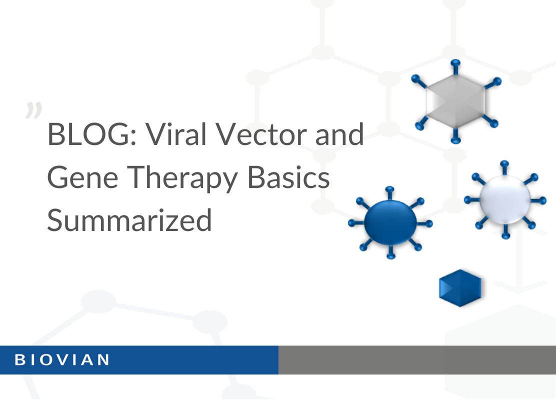 BLOG Viral Vectors and gene therapy basics summarized